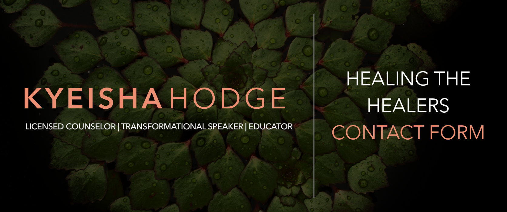 Click here to book me as a speaker.